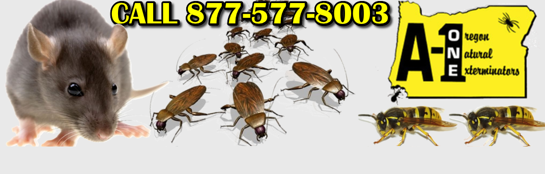 Brookings Pest Control